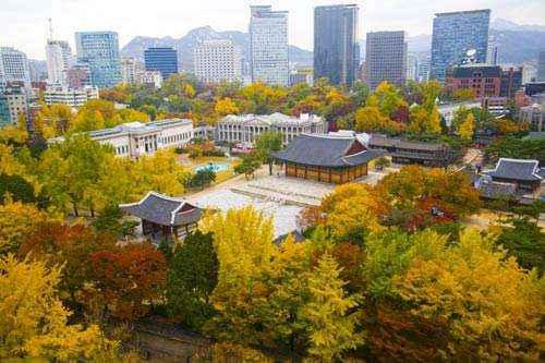 Phai long Seoul 3