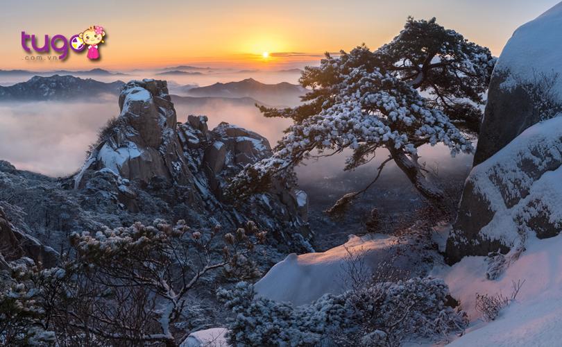 Phong cảnh thiên nhiên hùng vĩ trên đỉnh Bukhansan