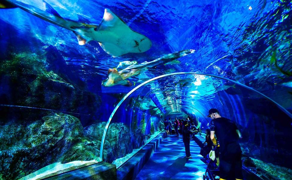 Sea Life ở Bangkok