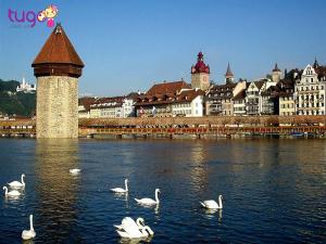 Lucerne là một thành phố thuộc miền trung Thụy Sỹ và là điểm dừng hấp dẫn du khách trên cung đường di chuyển từ Pháp hay từ Đông Âu qua Ý