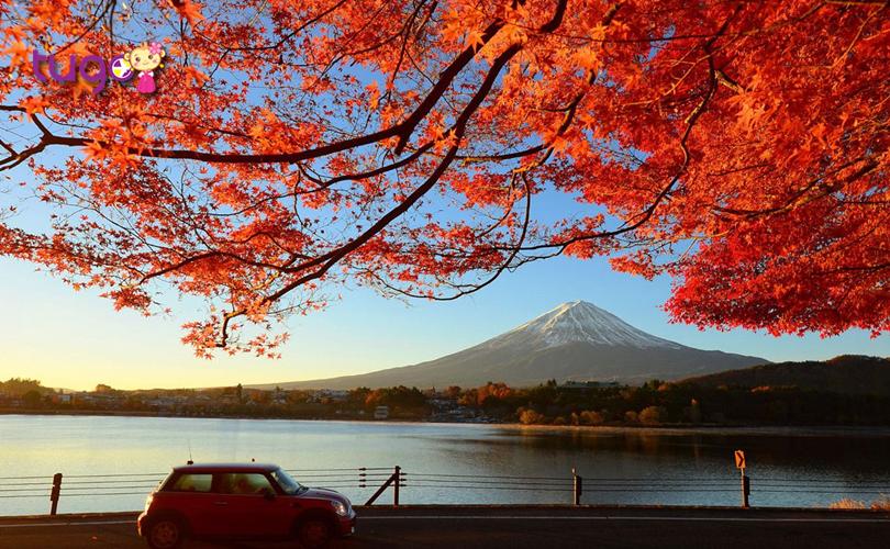 Thời tiết tháng 10 ở Nhật Bản khá ôn hòa, mát mẻ và rất thuận lợi cho các hoạt động du lịch