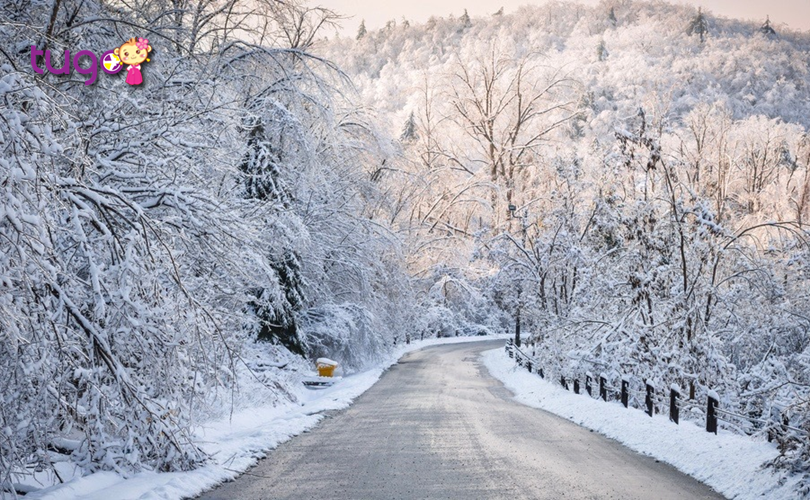 Thời tiết tháng 2 ở Canada khá lạnh, nhiều vùng có tuyết rơi dày đặc, nhất là khu vực phía Bắc