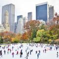 Trượt băng là môn thể thao cực kì hấp dẫn ở Mỹ vào mùa đông