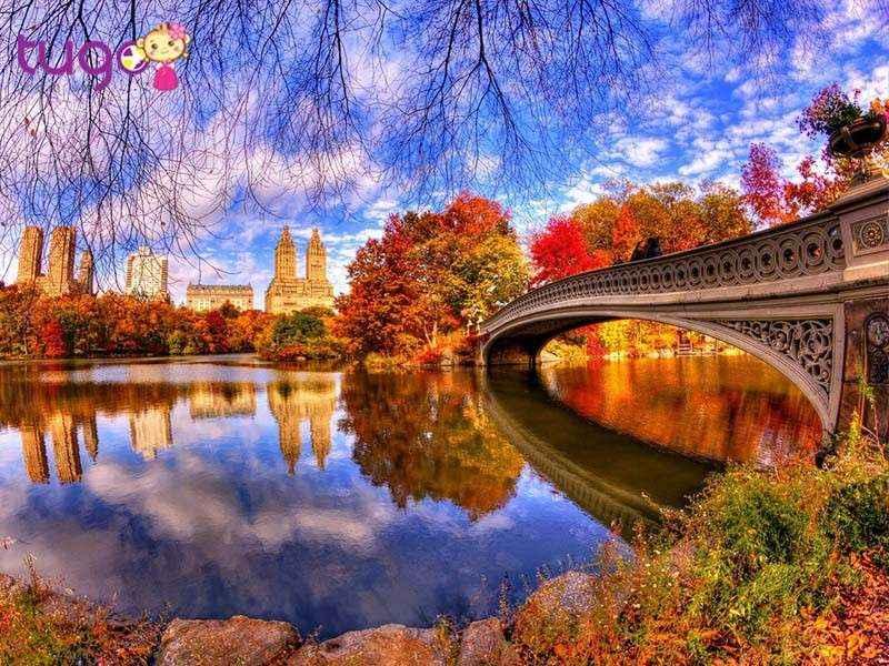 Thời điểm thích hợp nhất để du lịch Mỹ là vào khoảng mùa xuân và mùa thu