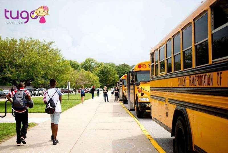 Xe bus là phương tiện di chuyển phổ biến ở Mỹ