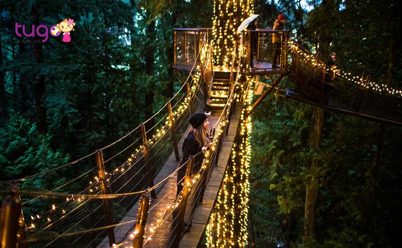 Vẻ đẹp rực rỡ, lung linh của chiếc cầu Capilano Canyon khi đêm về