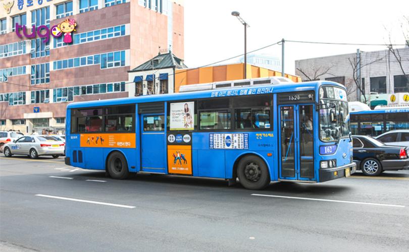 Xe buýt là một trong những phương tiện công cộng tiện lợi ở Hàn Quốc