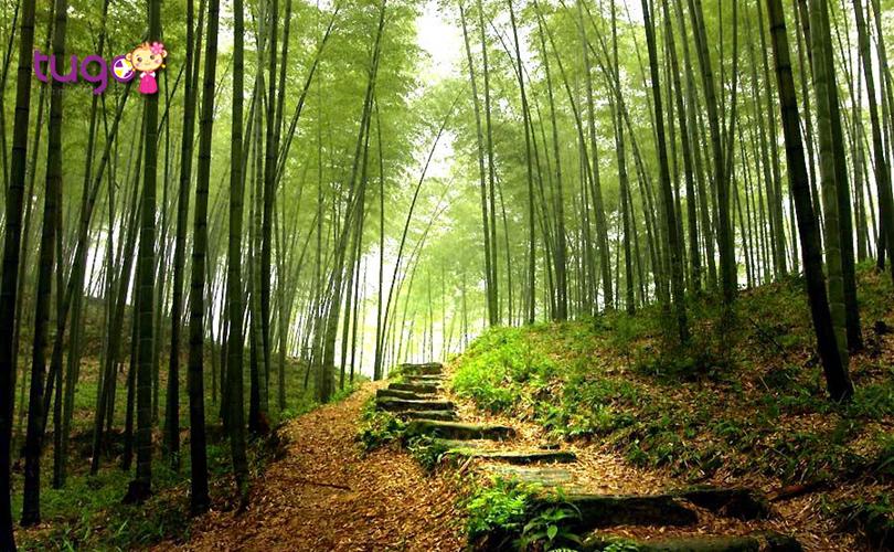 Yếu tố môi trường cũng là khá cạnh mà bạn cần quan tâm khi chọn các công ty du lịch uy tín