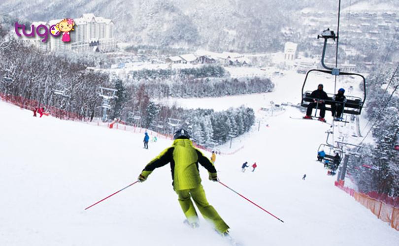Yongpyong cũng là một địa điểm trượt tuyết lý tưởng dành cho mọi du khách