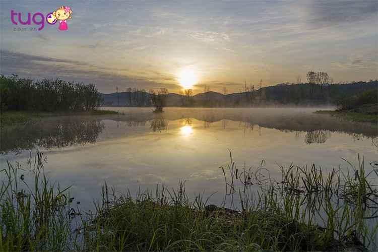 dam-lay-upo-marsh-mai-nha-chung-cua-hon-1500-sinh-vat