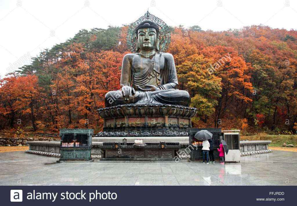 TOUR HÀN QUỐC 4N3D: ĐẢO NAMI - NÚI SEORAK - GANGWON - SEOUL (TST)