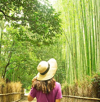 Hành lý mang đi du lịch Nhật Bản tugo.com.vnHành lý mang đi du lịch Nhật Bản tugo.com.vn