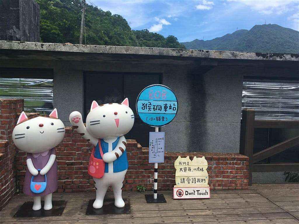 Houtong - Ngôi làng thú vị dành cho các tín đồ yêu mèo khám phá