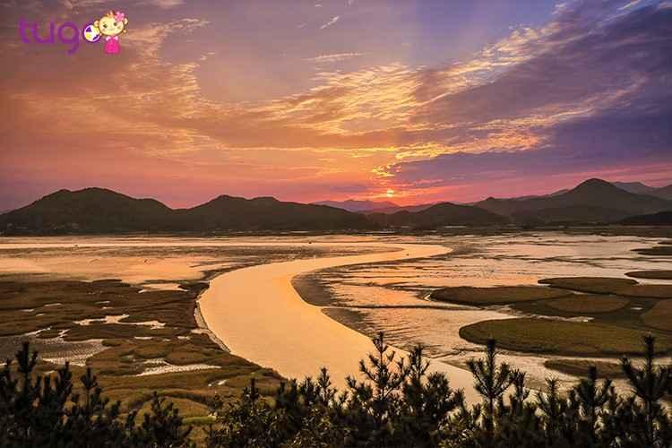 khung-canh-mo-mang-tai-bai-lau-say-lon-nhat-han-quoc-vinh-suncheon