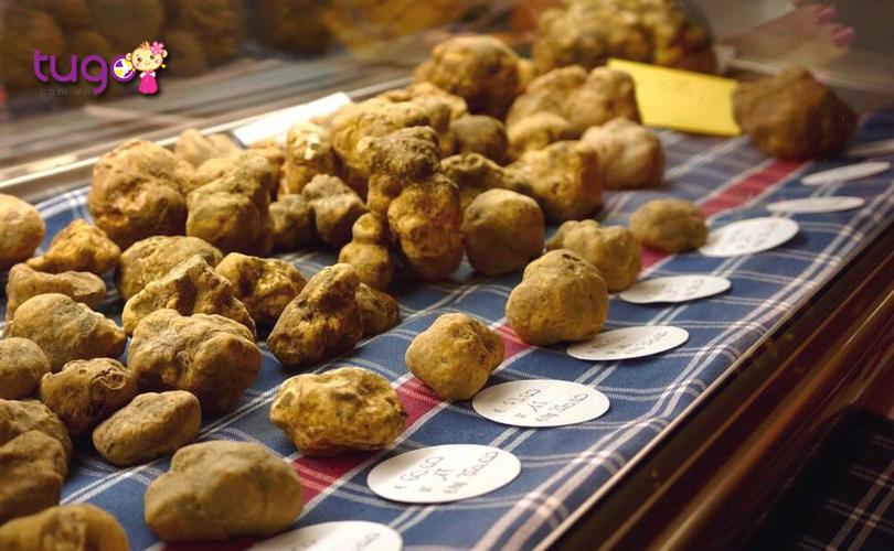 nam-truffle-trang-la-loai-nam-dat-tien-nhat-the-gioi-hien-nay