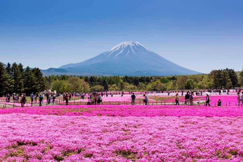 TOUR NHẬT BẢN 4N4D : NAGOYA–HAKONE–FUJI MOUNT–TOKYO–NAGOYA