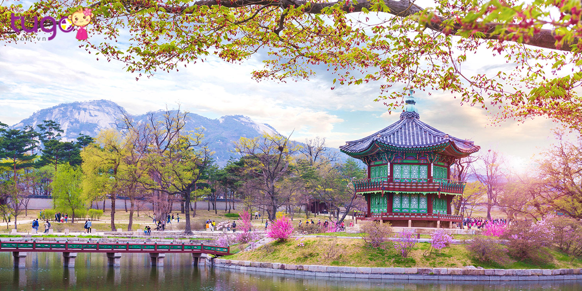 Hãy cùng Tugo điểm qua những địa điểm nổi tiếng ở Hàn Quốc