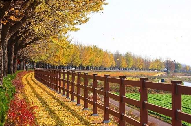 Những địa điểm đặc sắc của thành phố nghệ thuật Changwon 4