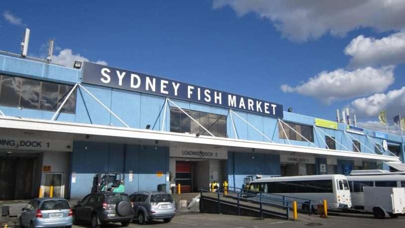Không gian bên ngoài của chợ cá Sydney