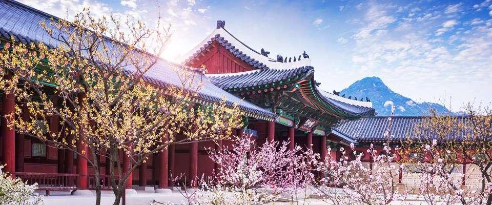 Hàn Quốc thu hút khách du lịch nhờ các danh lam thắng cảnh tuyệt vời và nền văn hóa đặc trưng đậm đà bản sắc