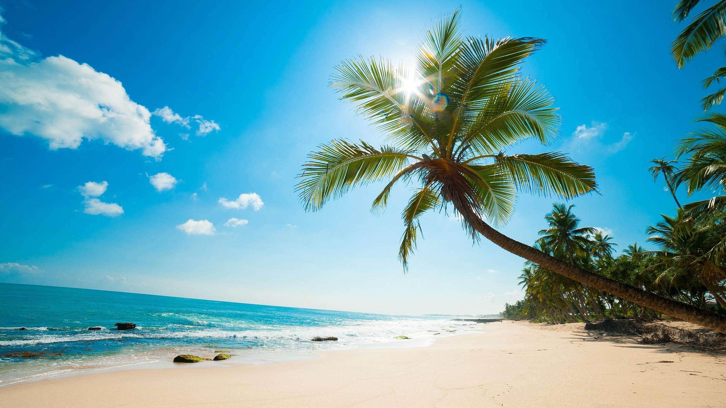 Cẩm nang du lịch phú quốc rất cần thiết khi tới hòn đảo xinh đẹp này