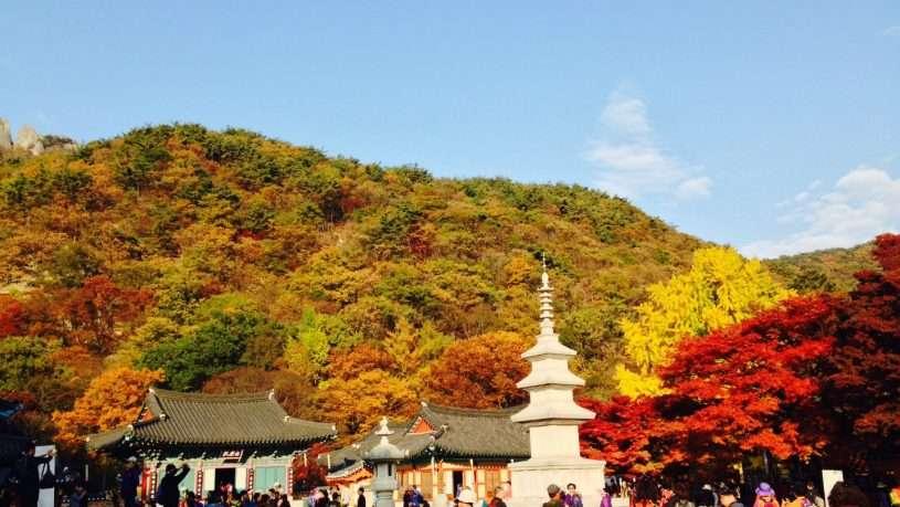 Cần chuẩn bị gì cho tour du lịch Hàn Quốc 5 ngày 4 đêm?