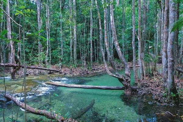 Khlong Thom hoang sơ ẩn mình trong rừng sâu
