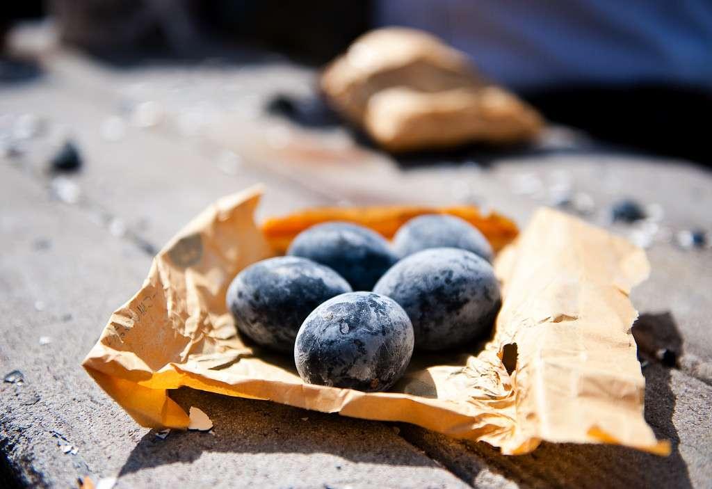 Tương truyền rằng, ăn mỗi quả trứng đen họ sẽ tăng lên 7 năm tuổi thọ