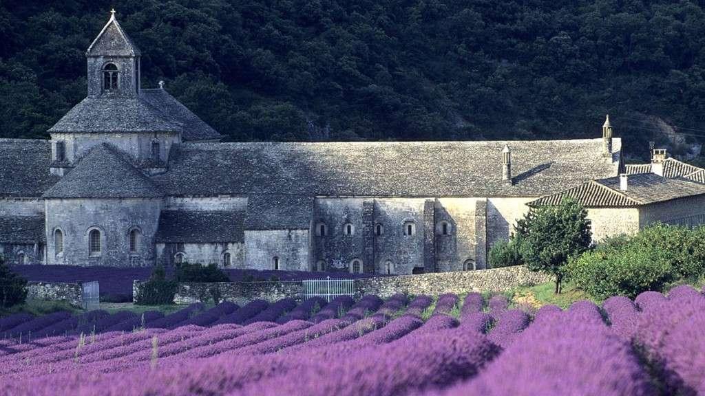 Provence với những cánh đồng hoa oải hương xinh đẹp