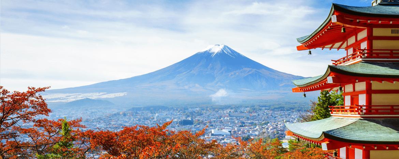 Nếu lựa chọn các địa điểm tham quan miễn phí, bạn sẽ tiết kiệm được khá nhiều trong chuyến đi du lịch Nhật Bản đấy