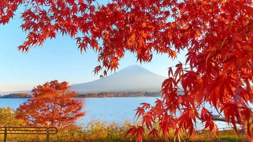 Thời tiết Nhật Bản tháng 10 hứa hẹn cho bạn chuyến du lịch hấp dẫn
