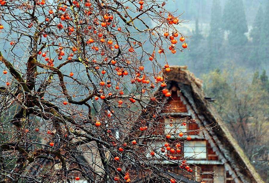 Qua hàng trăm năm, ngôi làng vẫn giữ nguyên vẻ đẹp như ban đầu