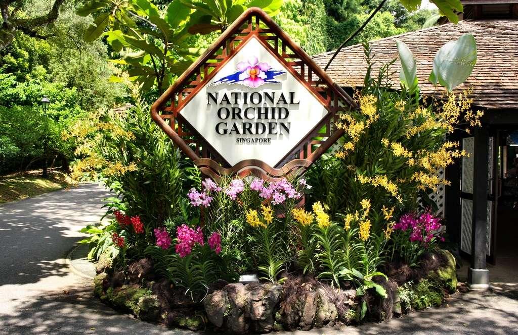 Vườn hoa đủ màu tươi thắm rải rác khắp các khu vườn