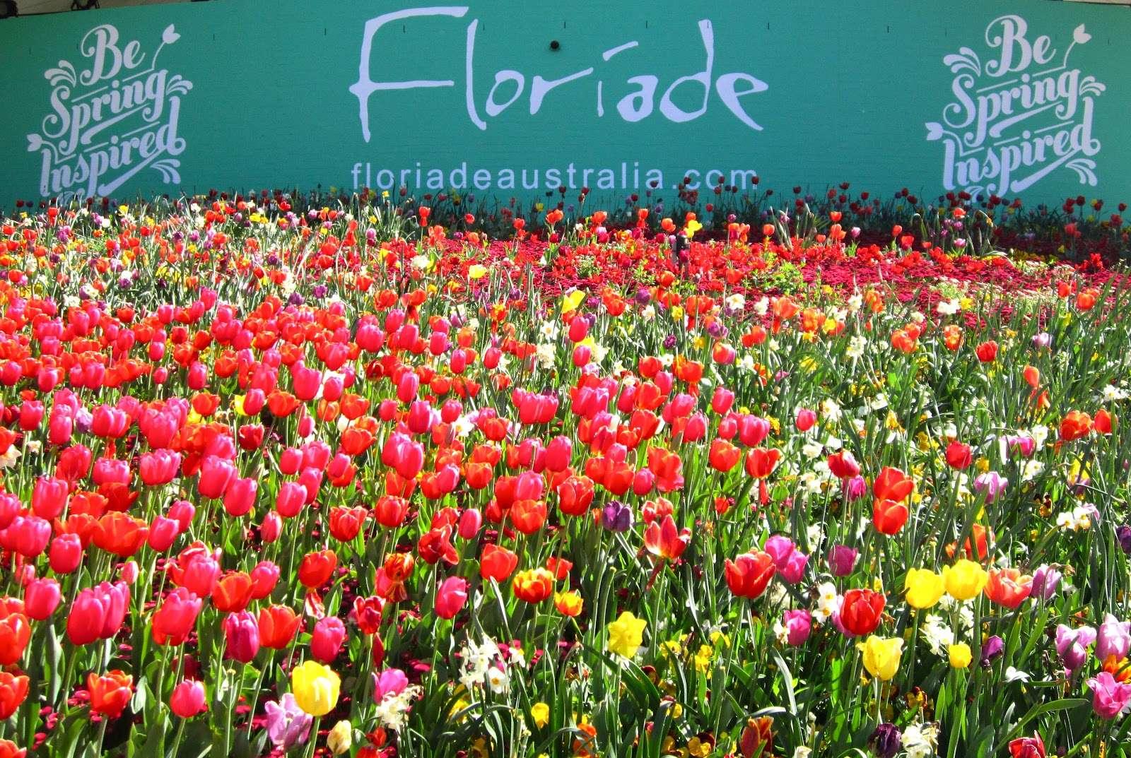 Cảnh sắc rực rỡ tại Lễ hội hoa Floriade