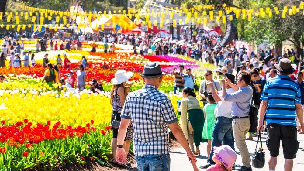 Lễ hội này cũng thu hút rất nhiều khách du lịch
