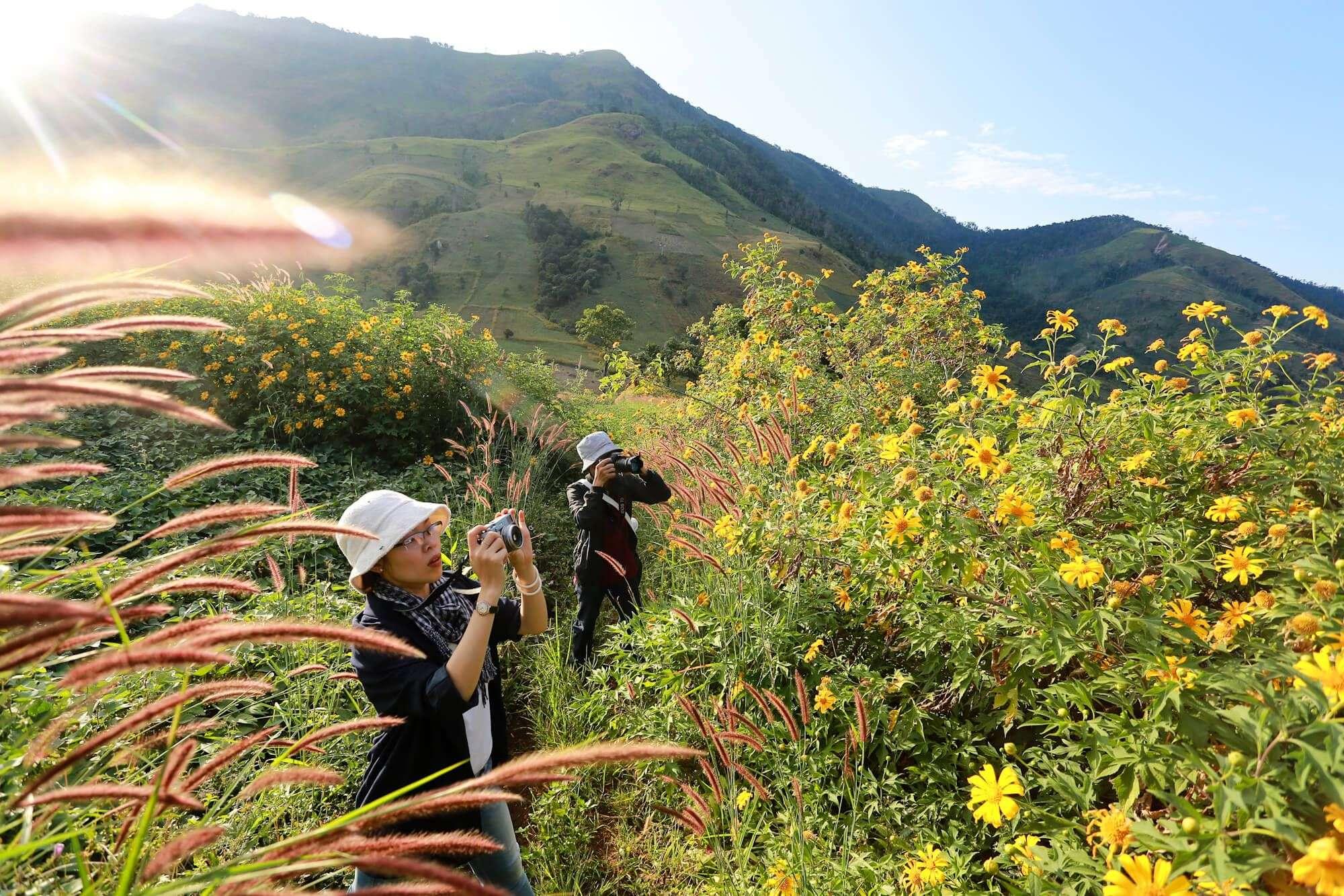 Lễ hội hoa dã quỳ Chư Đăng Ya tại Gia Lai